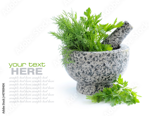 Stone mortar and pestle with greenery of parsley and dill