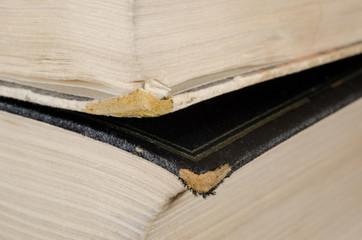 abgenutzte Buchkanten makro (antike Bücher)