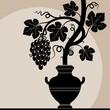 Grape vine in a vase. Silhouette vine.