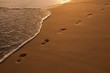 Footsteps in the Golden Sand
