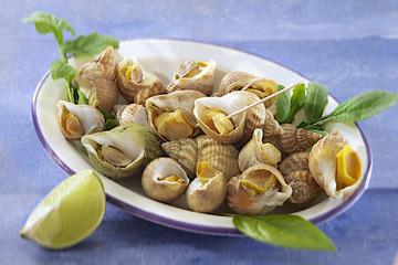 Bulots ou Escargots de mer