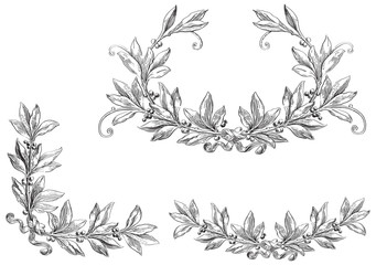 Decorative elements at engraving style.