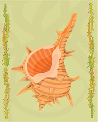Shellfish in a decorative illustration