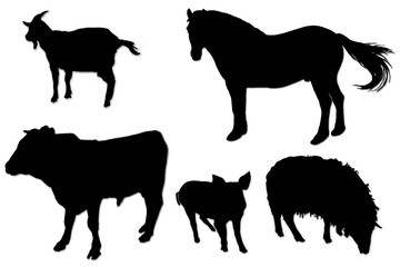 black silhouettes of domestic animals