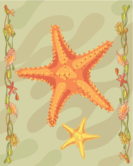 Starfish in a decorative illustration