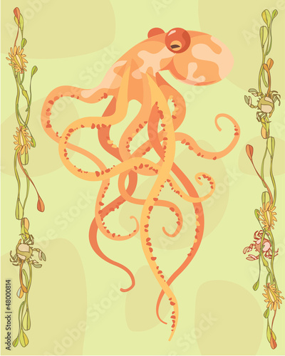 Octopus in a decorative illustration