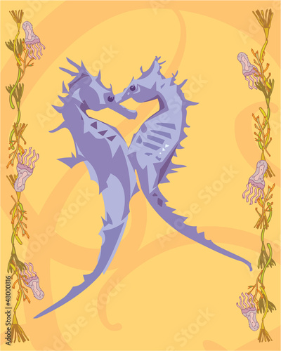 2 seahorses in a decorative illustration