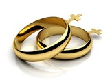 Gay female wedding rings in 3D