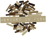 Word cloud for Mercury in fish