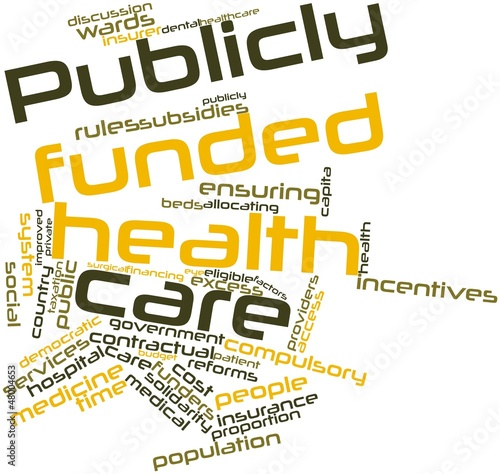 Word cloud for Publicly funded health care