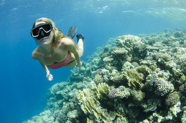 woman snorkeling on a coral reef