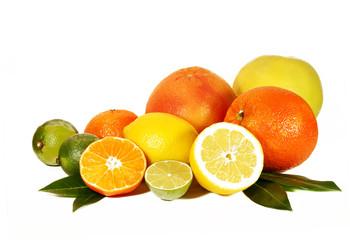 Zitrusfrüchte freigestellt
