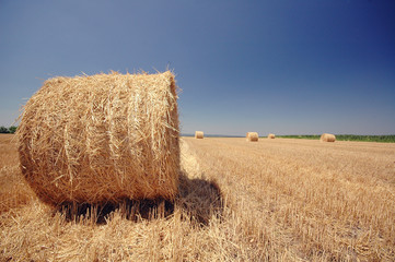 Straw roll on the field