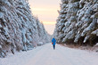 Tourist walking in winter landscape with snow covered fir trees.