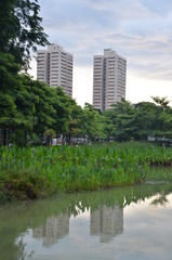 Two high rise buildings in Singapore as seen from a local park.