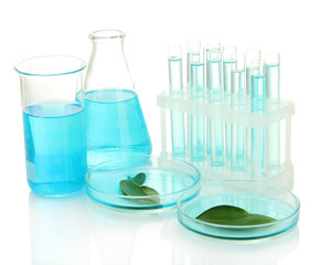 test-tubes and leaves tested in petri dishes  isolated on white