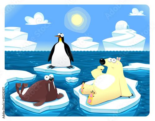 Polar scene