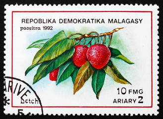 Postage stamp Malagasy 1992 Lychee, Tropical Fruit