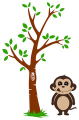 Tree and Monkey