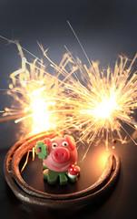 Partyschwein mit Wunderkerzen