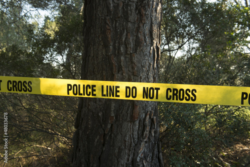 Crime scene in the forest