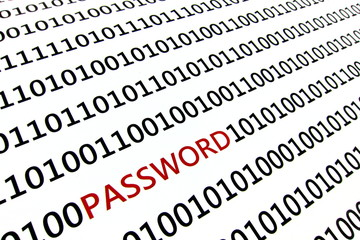 Computer password concept.  Red letters highlight word.