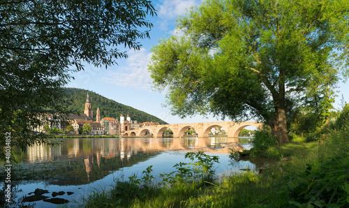 Heidelberg im Frühling