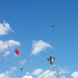 Kites Flying Together