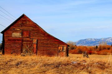 Old barn snowless Bozeman MT