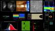 Scientific Data Animations