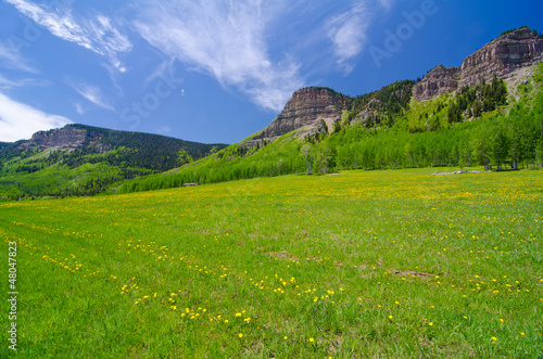 Pasture in the San Juan Mountains in Colorado