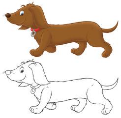 Brown banger-dog