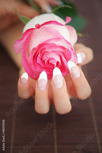 Fototapeten,nail art,nagel,finger,rose