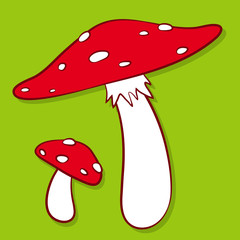 Colourful red spotted fly agaric