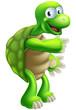Cartoon Tortoise or Turtle pointing