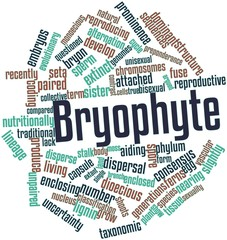 Word cloud for Bryophyte