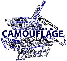 Word cloud for Camouflage
