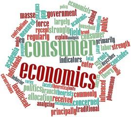 Word cloud for Consumer economics