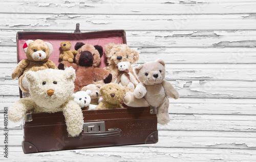 Alte Teddybären in einem alten Koffer