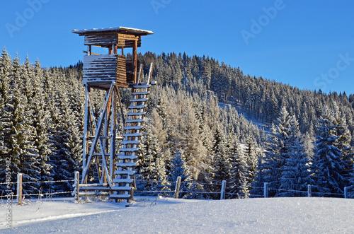 hochsitz im winter - 48059482