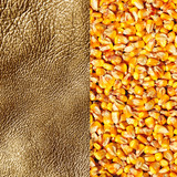 Commodity texture, gold & corn