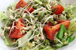 Sprout Salad Closeup - mung bean and broccoli seed sprouts