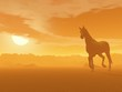 Horse in the desert by sunset - 3D render