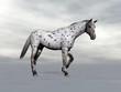 Leopard horse standing - 3D render