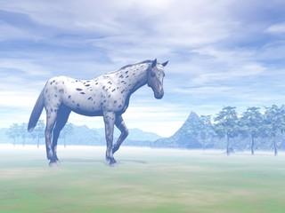 Leopard horse in nature - 3D render