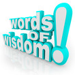 Words of Wisdom 3d Words Advice Information