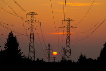 Power cables in sunset