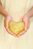 Hands of young woman holding potato in heart shape