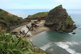 Piha Beach with Taitomo Island