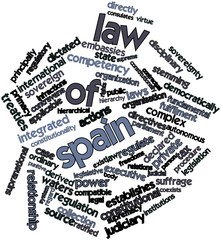 Word cloud for Law of Spain
